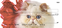 Cat Breed Checks