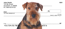 Terrier Breed Dog Checks